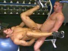 Två homofile ha analsex i gymmet