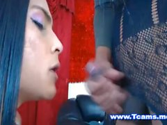 Hot Tranny Working with her Mouth