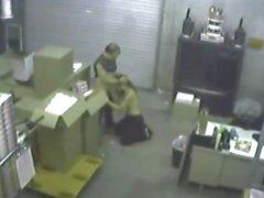 Überwachungskamera Sexcapades