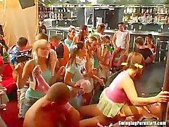 Сексуальная партии цыплят сосать и ебать хуи на клуб