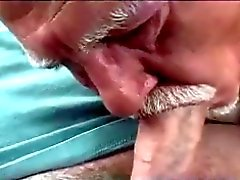 Gamle mannen Sucking Cock in Hyrbil