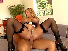 Hot and fleshy dick meal gobbled and enjoyed by Shyla Stylez
